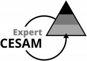 Logo de la certification Expert CESAM