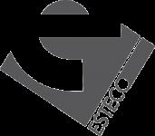 ESTECO logo